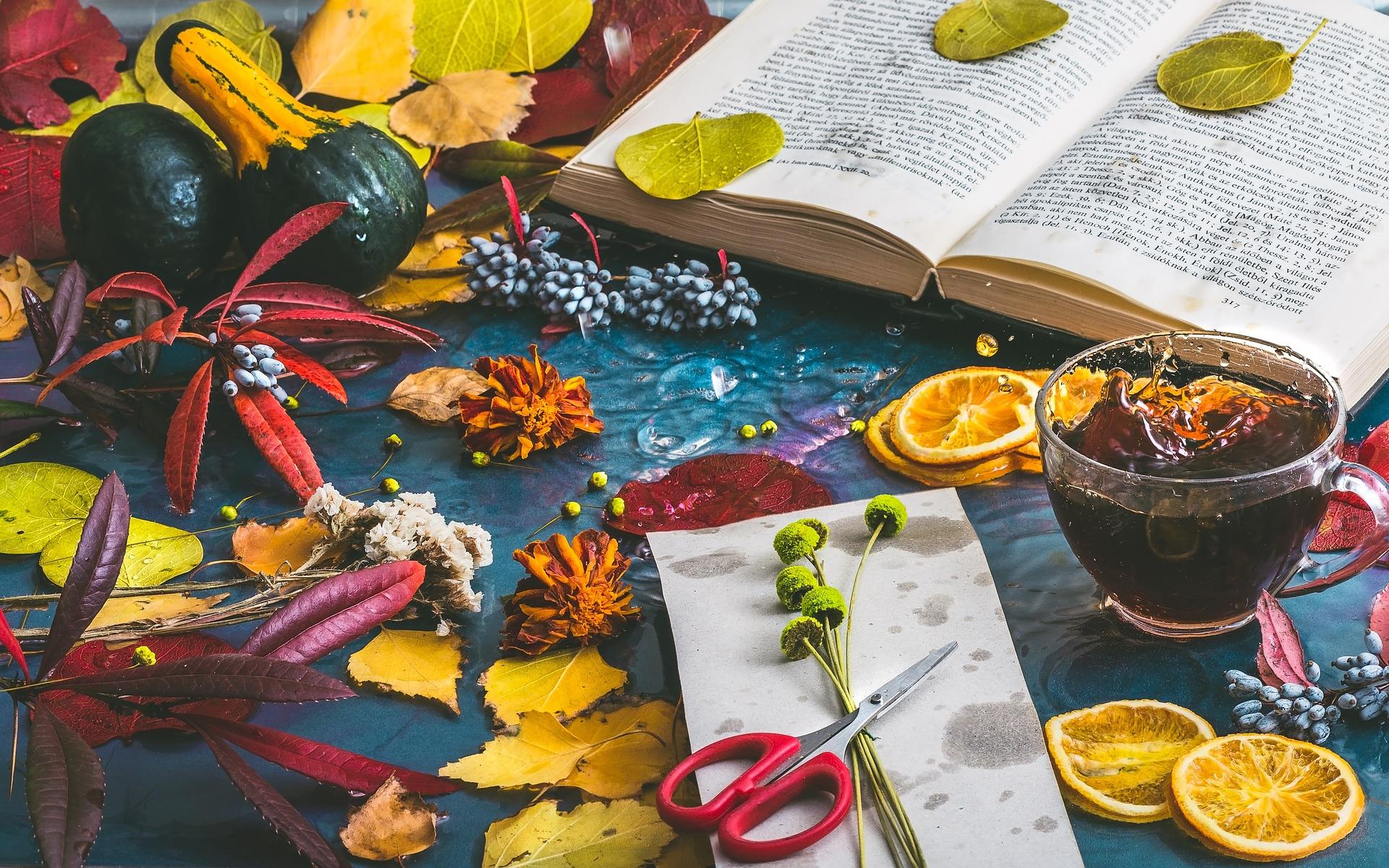 autumn-mood-1229981_1920