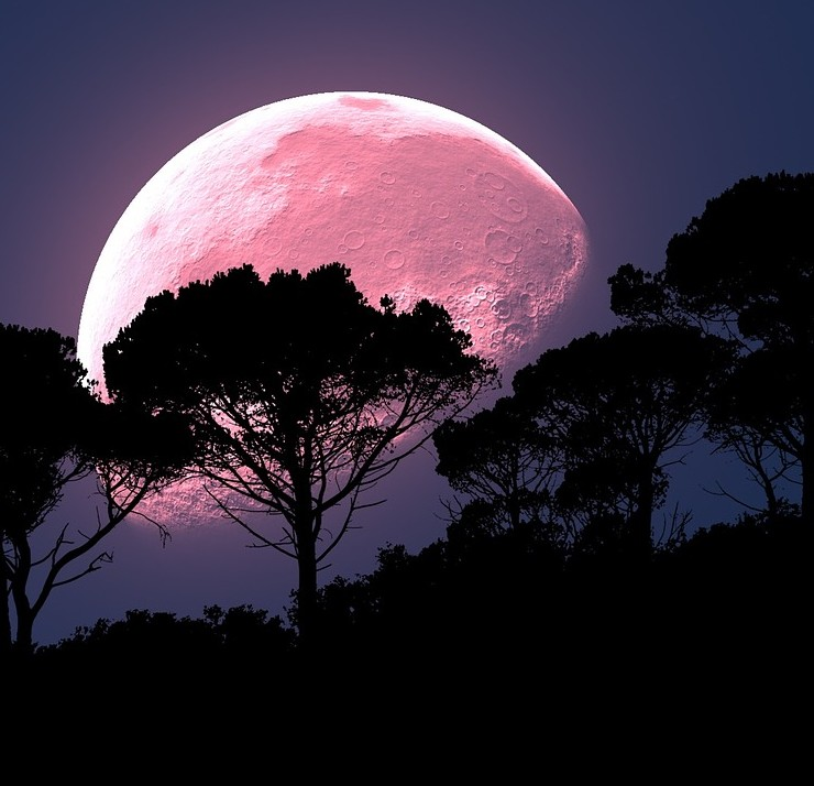 Pink Moon & Walpurgisnacht